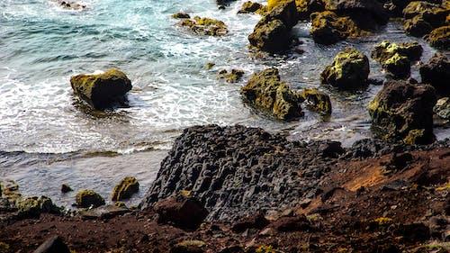 Imagine de stoc gratuită din tărâmul mării