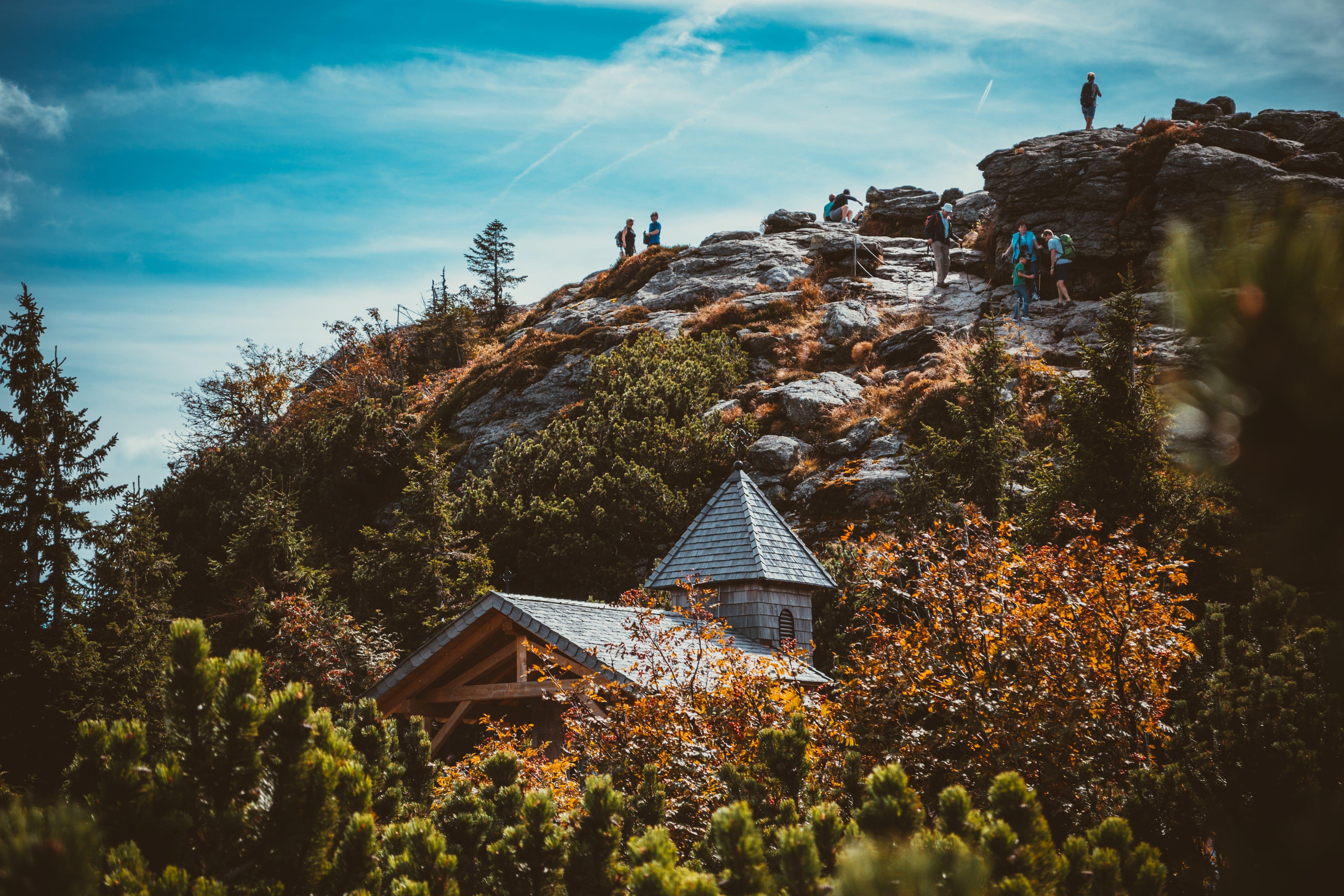 Kostenloses Stock Foto zu bäume, berg, felswand, gras