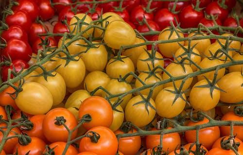 Ilmainen kuvapankkikuva tunnisteilla appelsiini, keltainen, kirsikkatomaatit, marketti