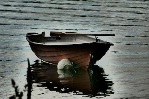 Kostnadsfri bild av roddbåt