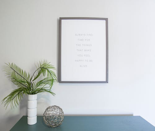 Green Leafed Plant Near Photo Frame