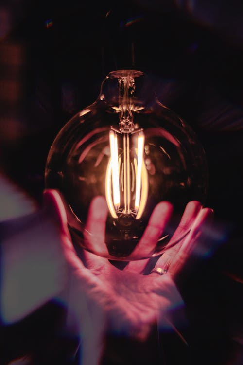 Close-Up Photo of Person Holding Bulb