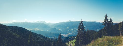 Free stock photo of adventure, alps, cloudy, conifer