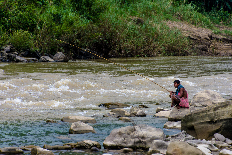 Free stock photo of fishing, people, water, life