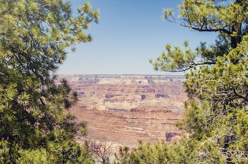 Základová fotografie zdarma na téma Amerika, denní, Grand Canyon, kameny