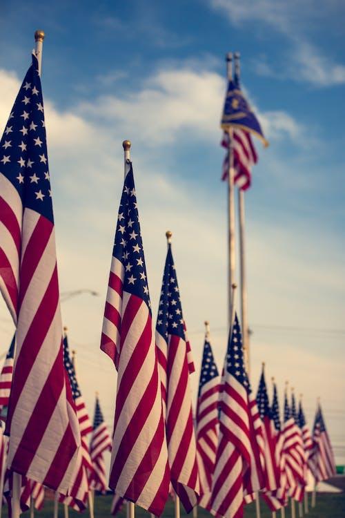 Foto profissional grátis de administração, bandeira dos Estados Unidos, bandeiras, céu azul