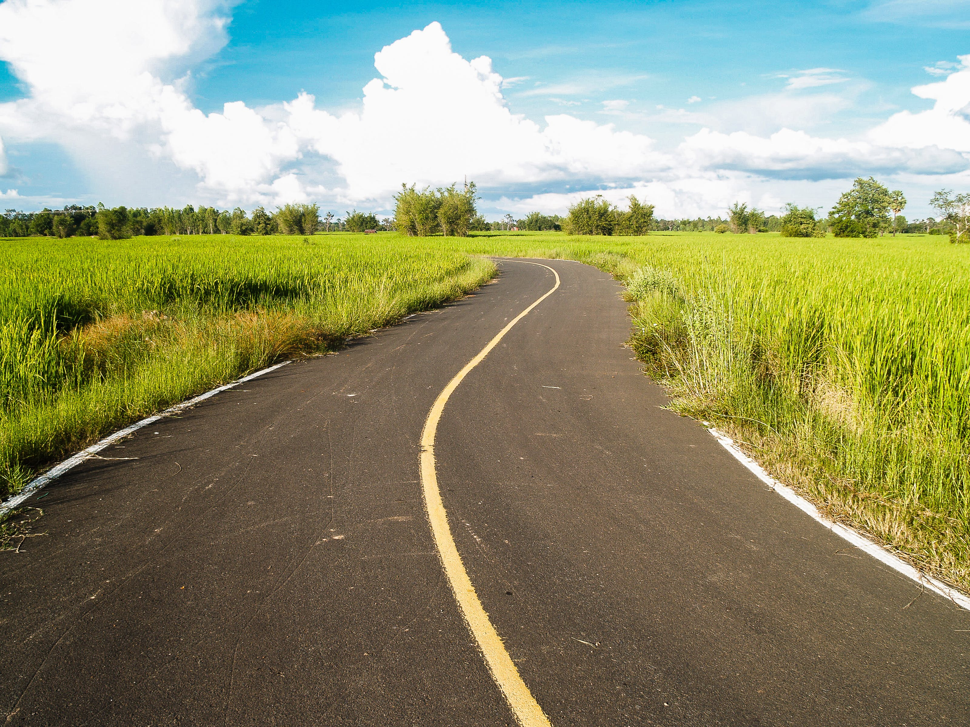 Paved Road in Between Green Grass Field