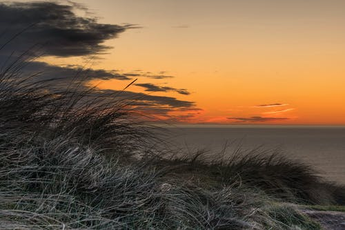 Fotos de stock gratuitas de césped, cielos anaranjados, mar, vacaciones
