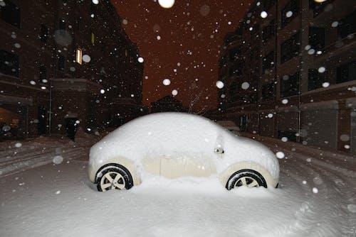 Gratis stockfoto met kever, sneeuw, Volkswagen Kever