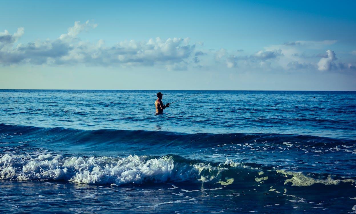 denní, mávání, moře