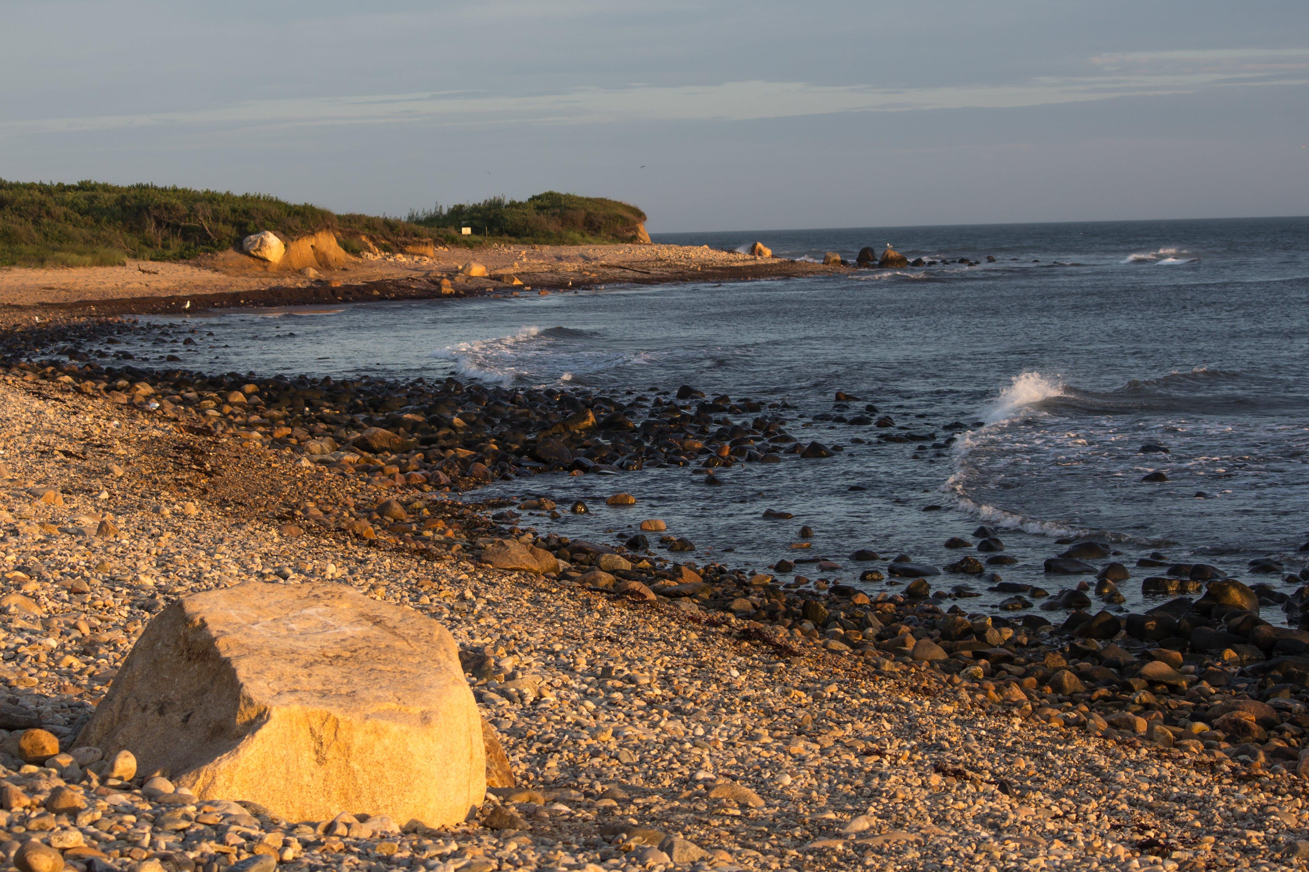 Free stock photo of beach, sunrise