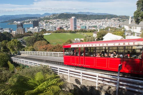 Free stock photo of cable car, hill view, nature, new zealand