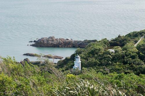 Free stock photo of landscape, lighthouse, matiu somes islands, ocean