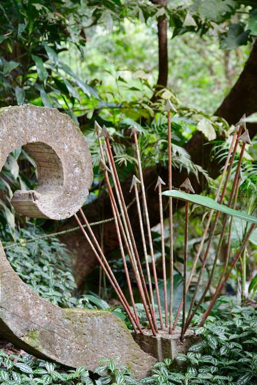 Ảnh lưu trữ miễn phí về bức tượng, Chúa tể rừng xanh, điêu khắc, rừng nhiệt đới