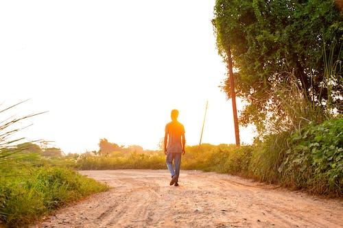 Free stock photo of early morning, empty street, golden sun, Good Morning