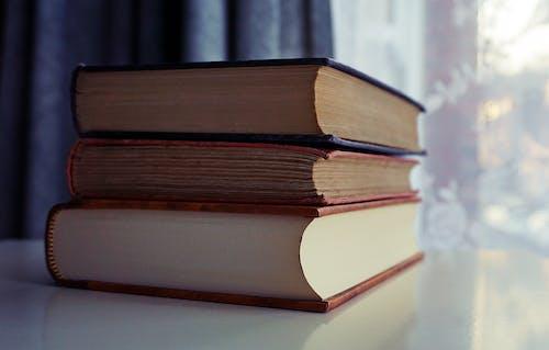Foto d'estoc gratuïta de biblioteca, coneixement, dades, educació