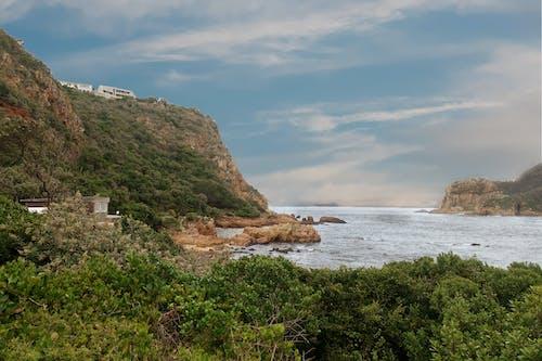 Photos gratuites de arbres, baie, bord de mer, cailloux