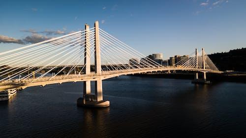 Fotos de stock gratuitas de arquitectura, cruce de tilikum, Portland, puente
