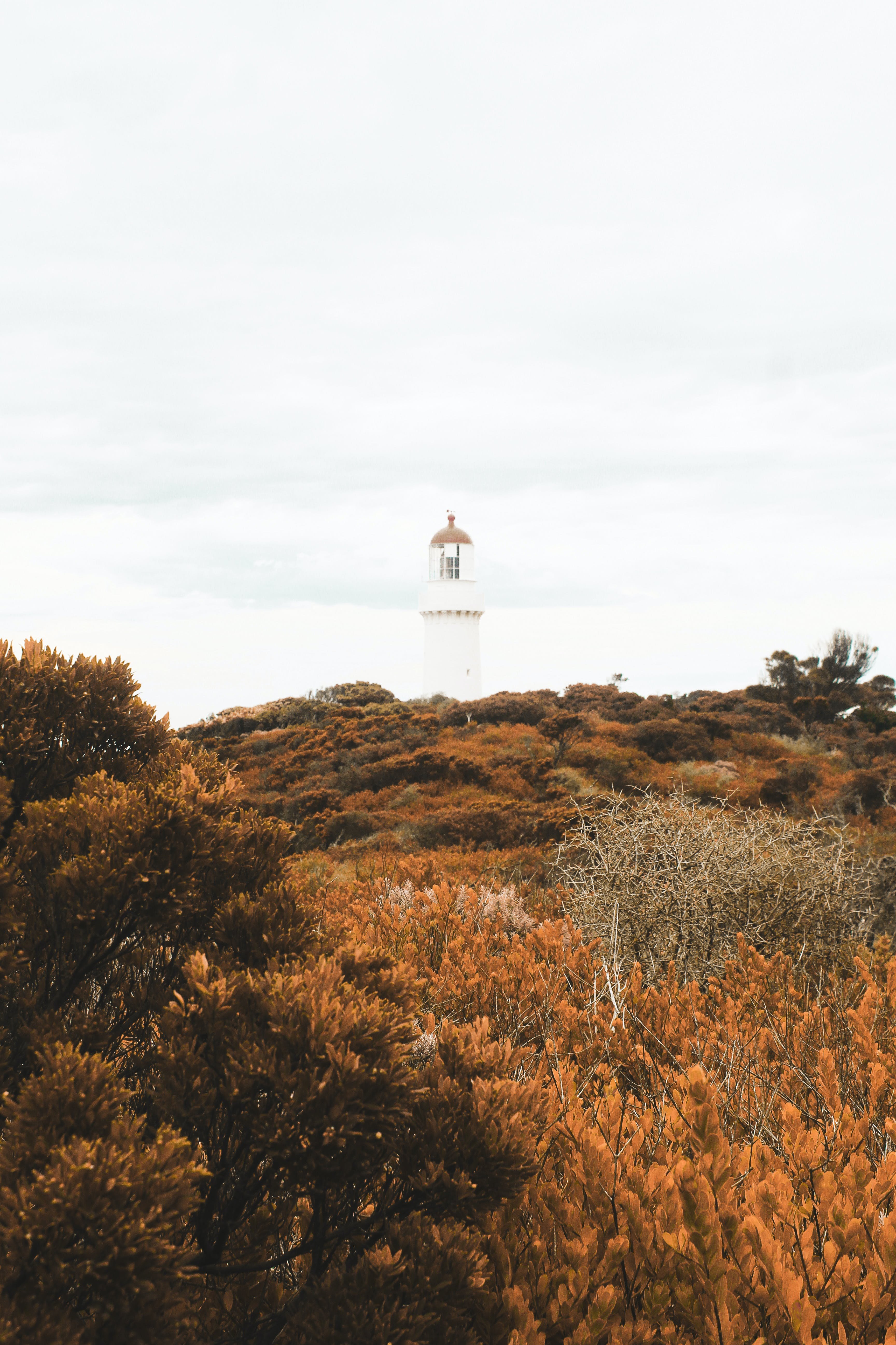 In Distance White Lighthouse