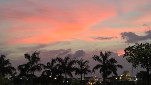 Free stock photo of india, Kolkata, sunset, tourism