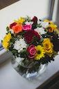 flowers, roses, decoration