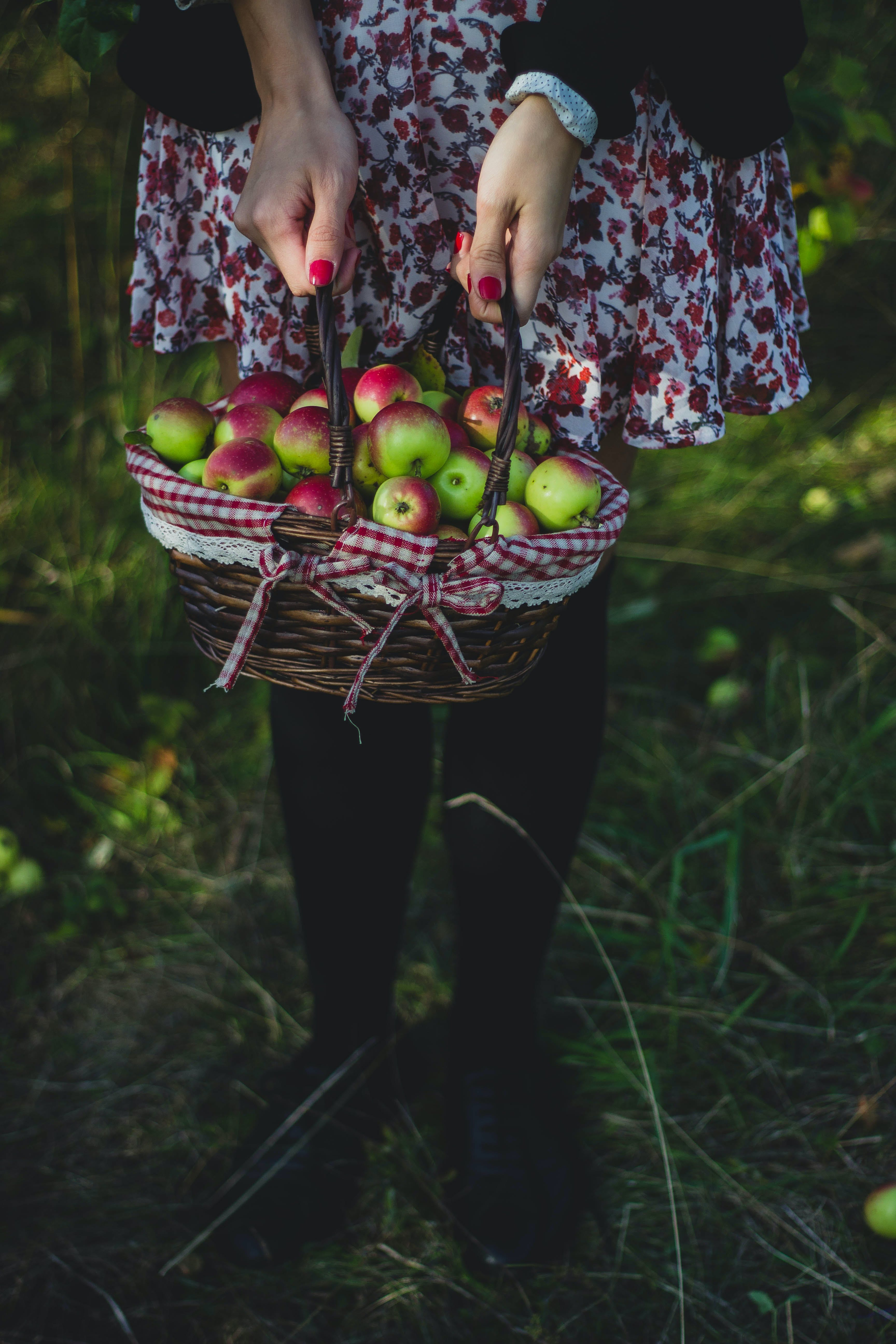 Free stock photo of healthy, fruits, apples, basket