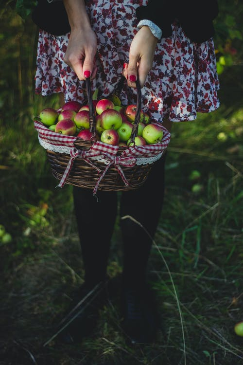 Person Holding Basket With Apples