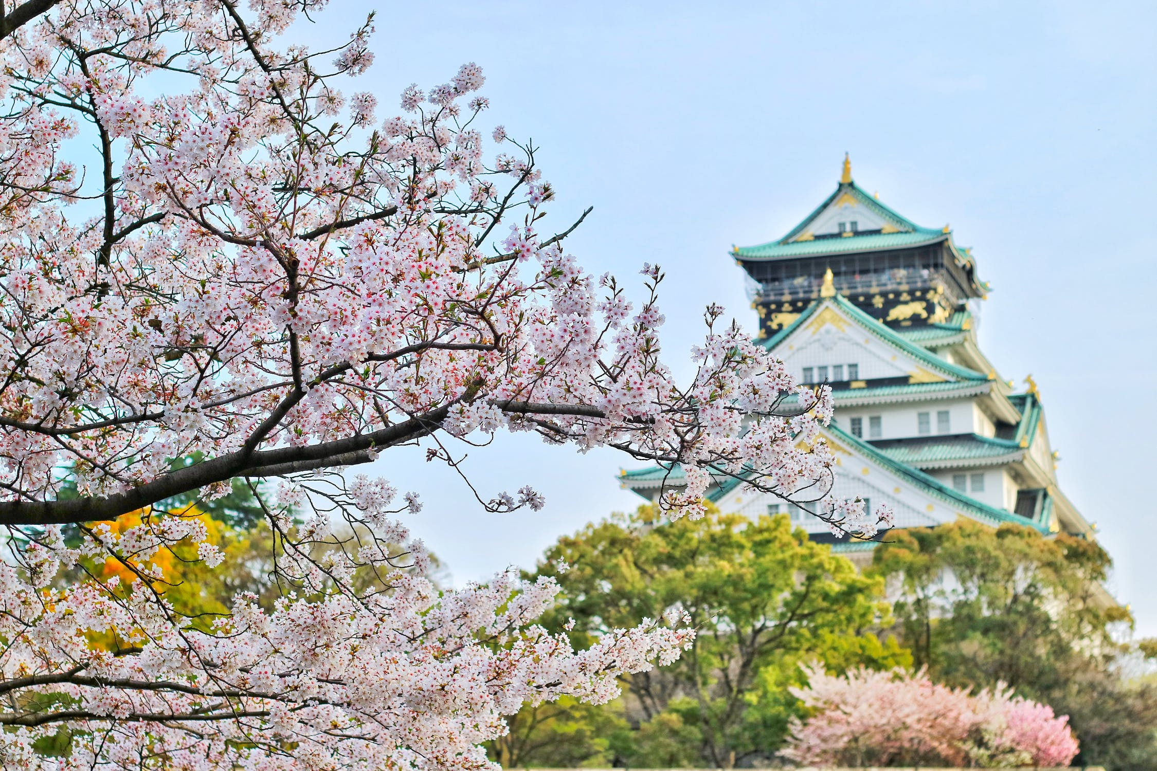 What Are The Best Cities For Japan Package Tours?