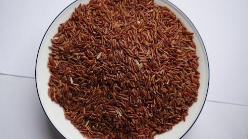 Free stock photo of rice, thailand