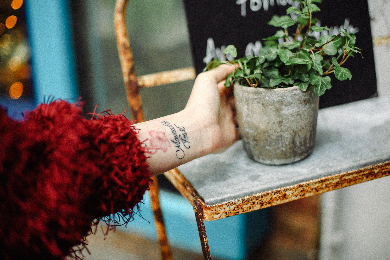 Person Holding Concrete Pot With Plant