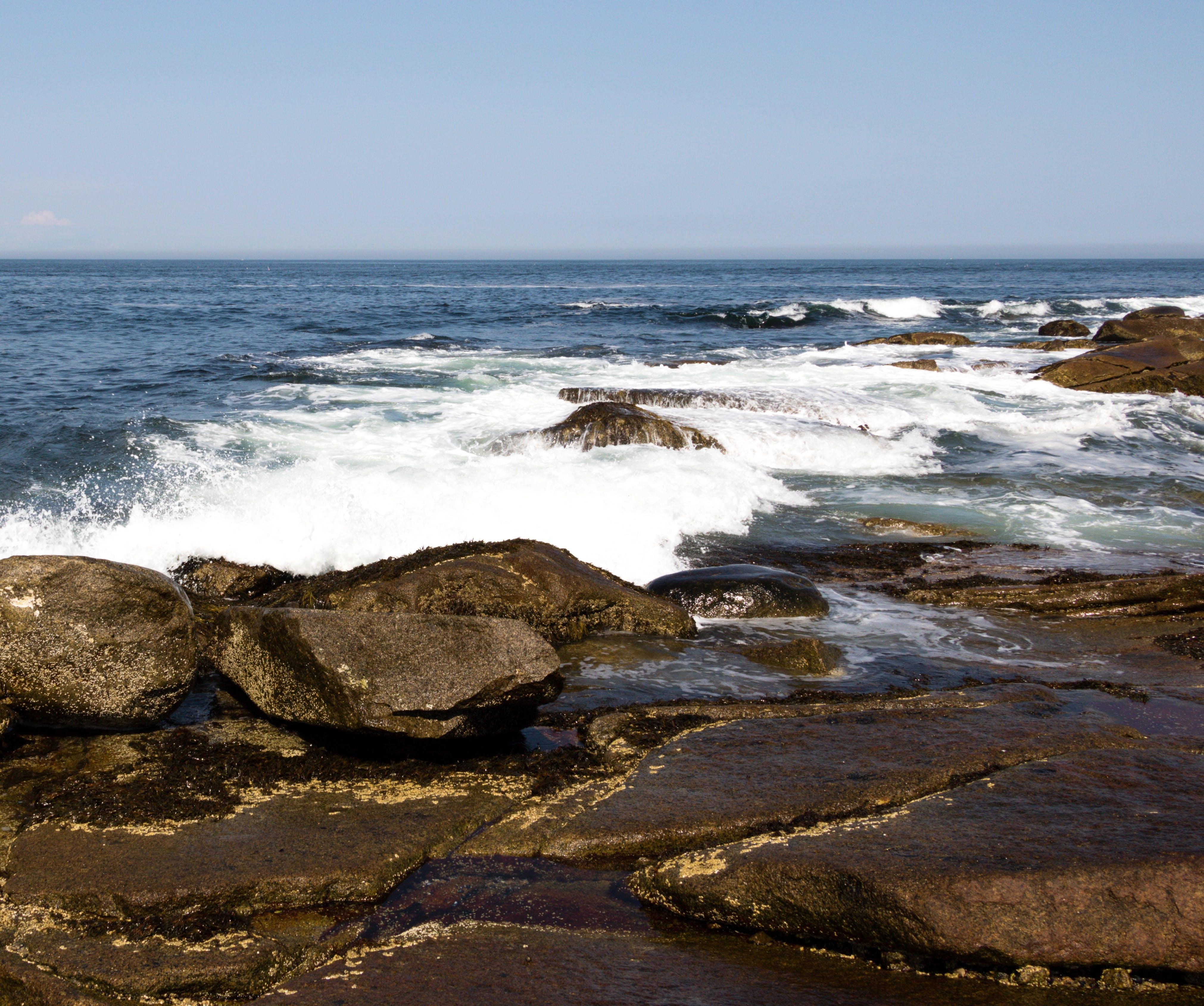 Free stock photo of landscape, massachusetts, new england, ocean