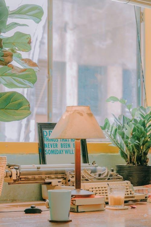 꽃병, 램프, 방, 빈티지의 무료 스톡 사진