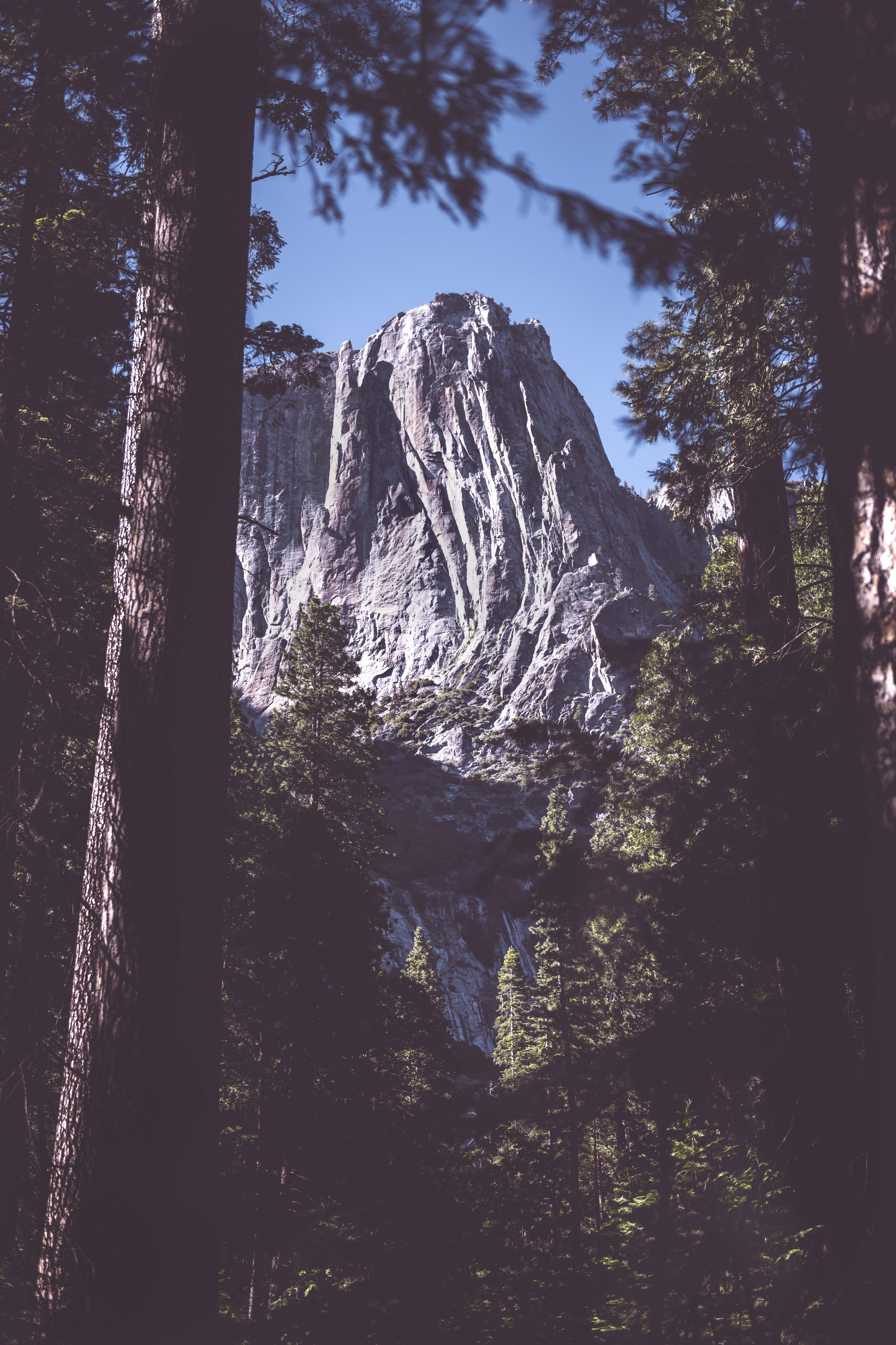 Gray Mountain Near Green Forest