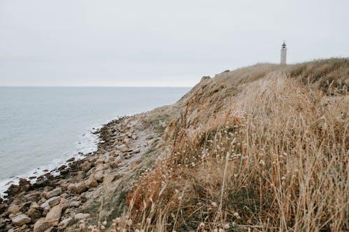 Základová fotografie zdarma na téma francie, maják, náladový, pobřeží