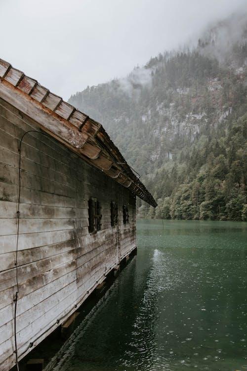 Ảnh lưu trữ miễn phí về ánh sáng ban ngày, cabin, cây, có sương mù
