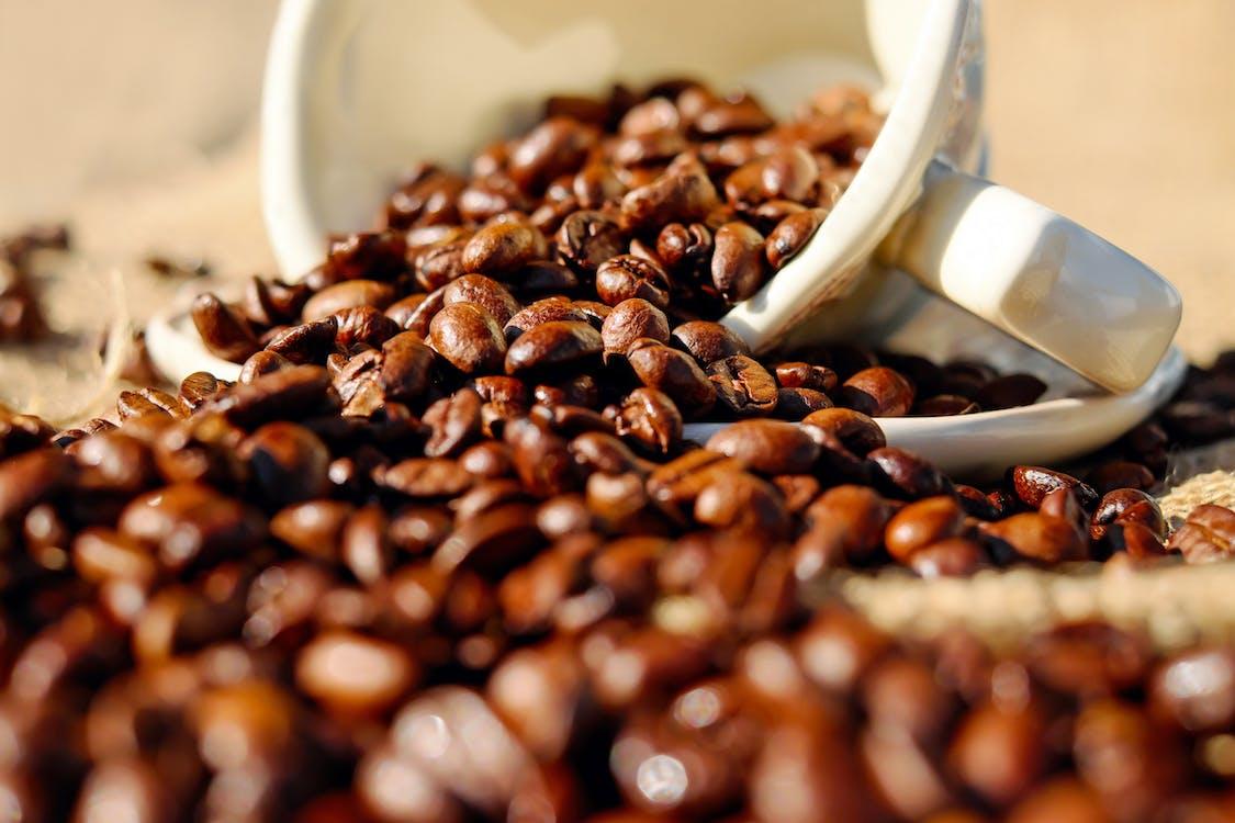 kaffe, kaffebönor, koffein