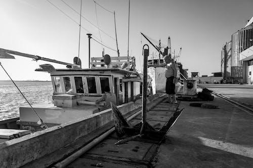 Foto stok gratis #barco, #pb, #porto