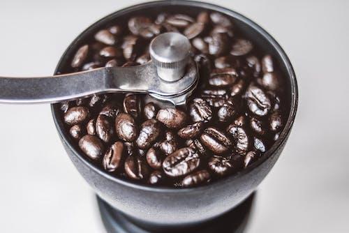 Imagine de stoc gratuită din boabe de cafea, cafea, cofeină, delicios