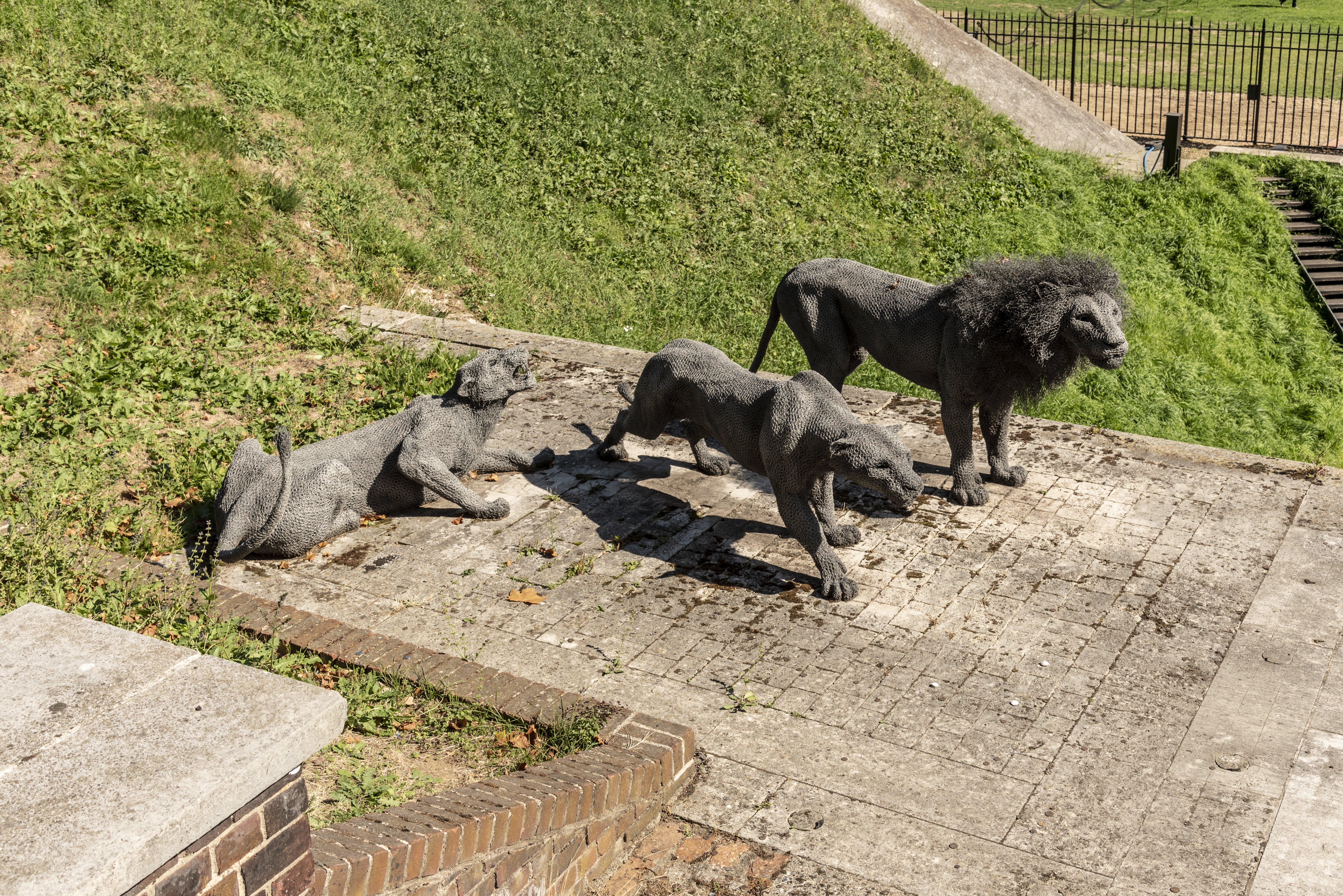 Δωρεάν στοκ φωτογραφιών με αγάλματα, άγρια ζώα