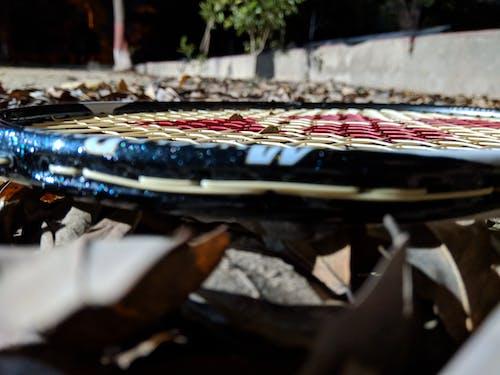Free stock photo of badminton, badminton love, fall foliage