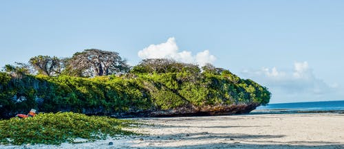 グリーンクリフブルーオーシャン, ケニア, バオバブの木の緑の崖, 崖モンバサ北海岸の無料の写真素材