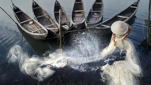 Δωρεάν στοκ φωτογραφιών με lang chai