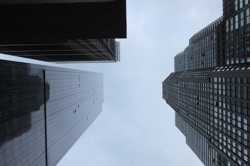 건물, 건축, 고층 건물, 도시의의 무료 스톡 사진
