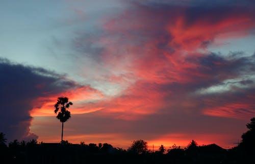Imagine de stoc gratuită din roșu nor