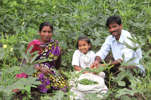 Free stock photo of family, farmer, happiness, maharashtra