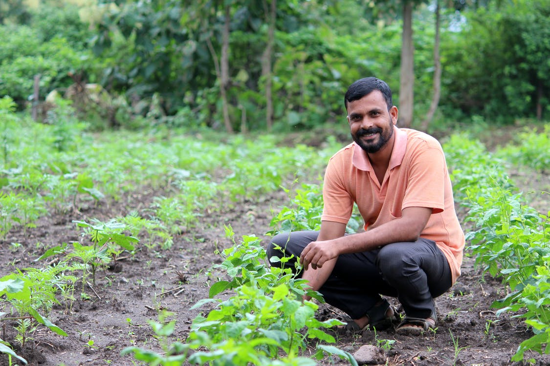 Free stock photo of devnala, farmer, happiness