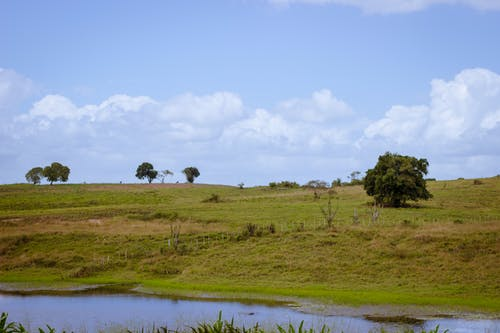Gratis lagerfoto af bane, blå, blå himmel, grøn