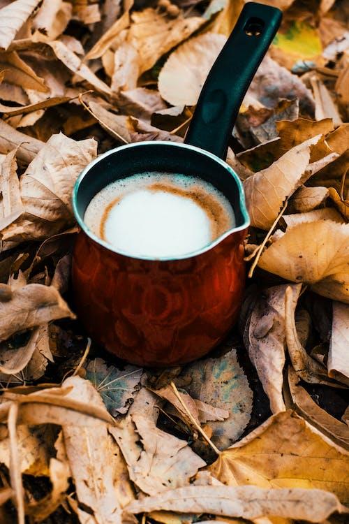 Ilmainen kuvapankkikuva tunnisteilla kahvi, kuppi, kuuma, lähikuva
