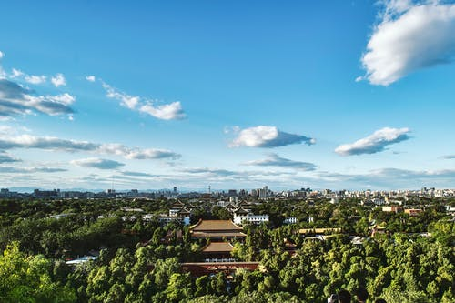 Birds Eye View Photography of Green Tree Forest