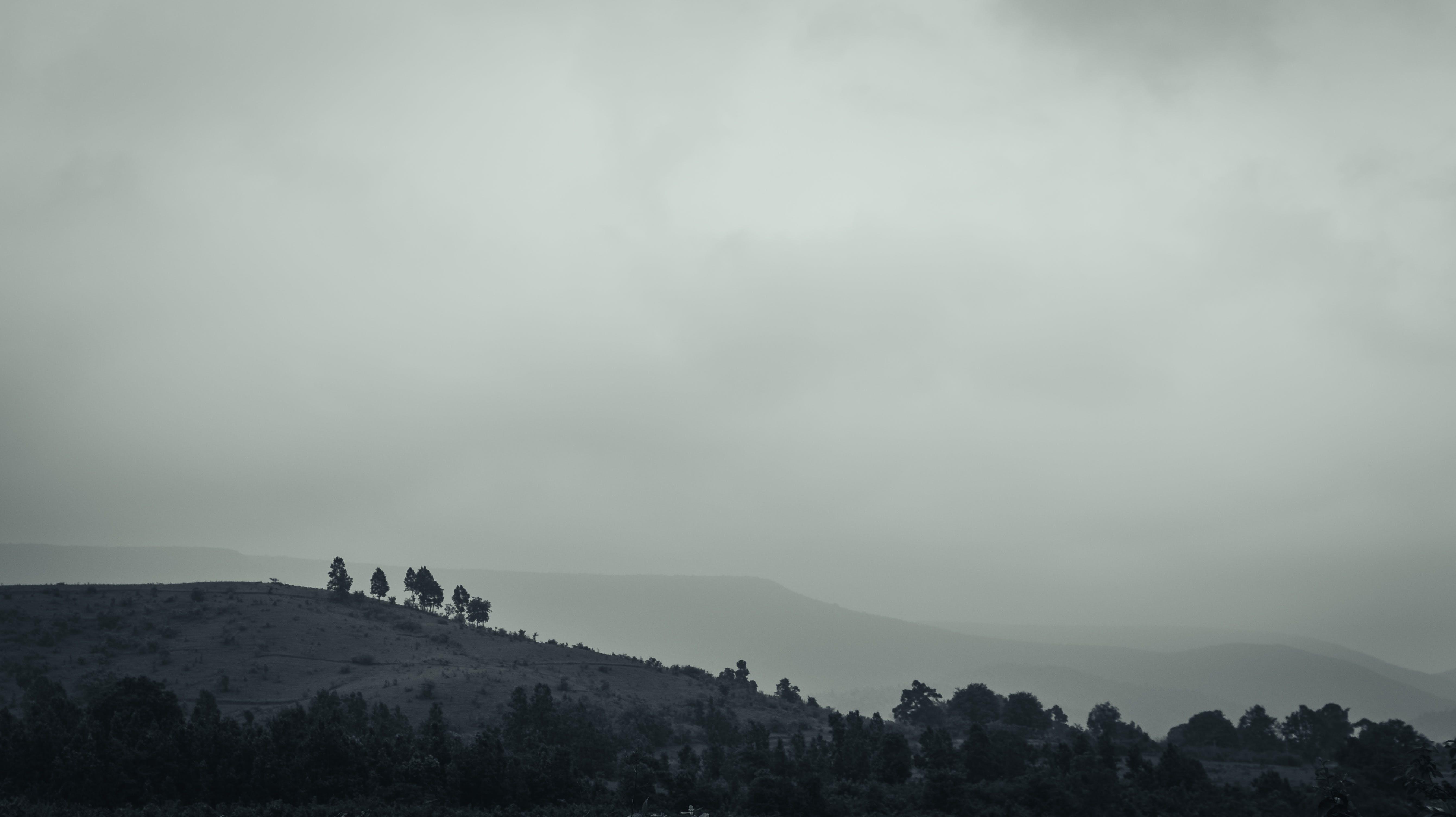 Foto d'estoc gratuïta de amb boira, boira, muntanya, paisatge